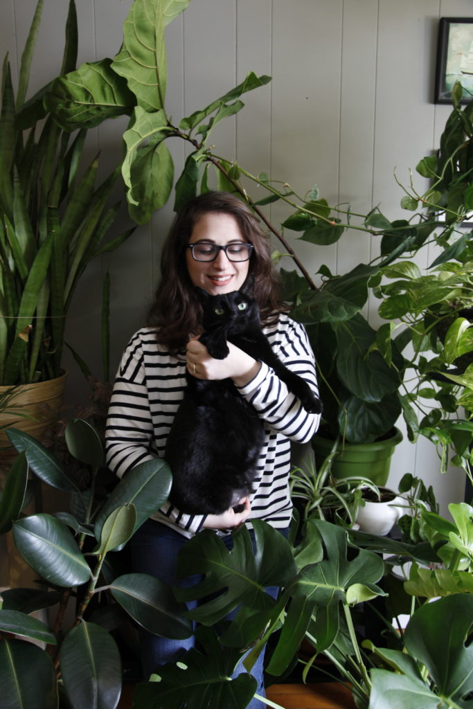 Urban Jungle with Cats