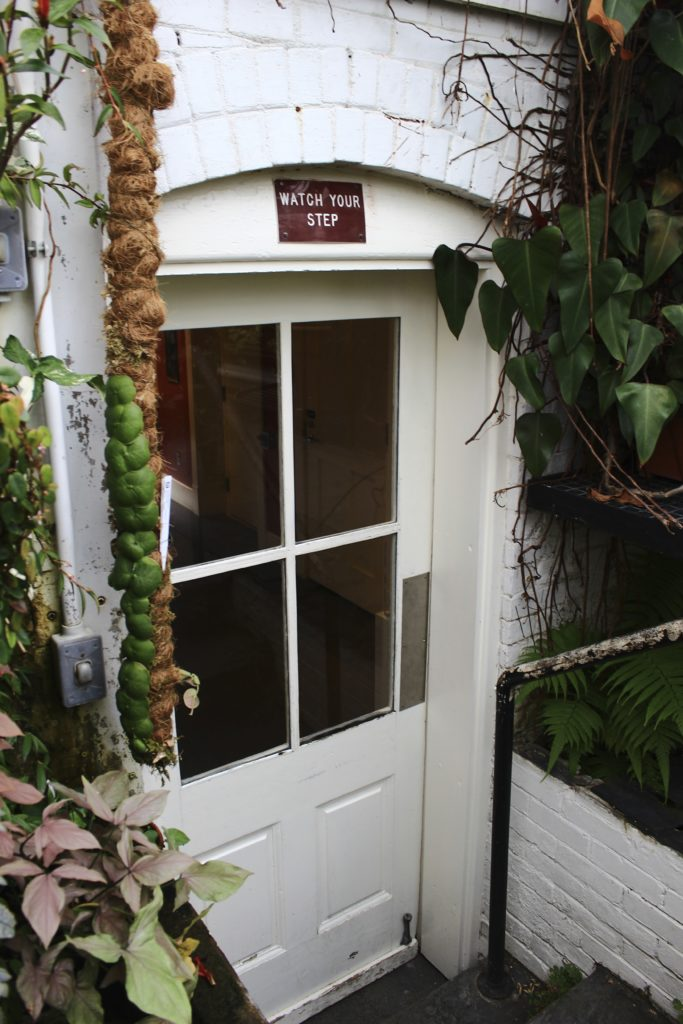Botanic Garden : Leaf & Paw
