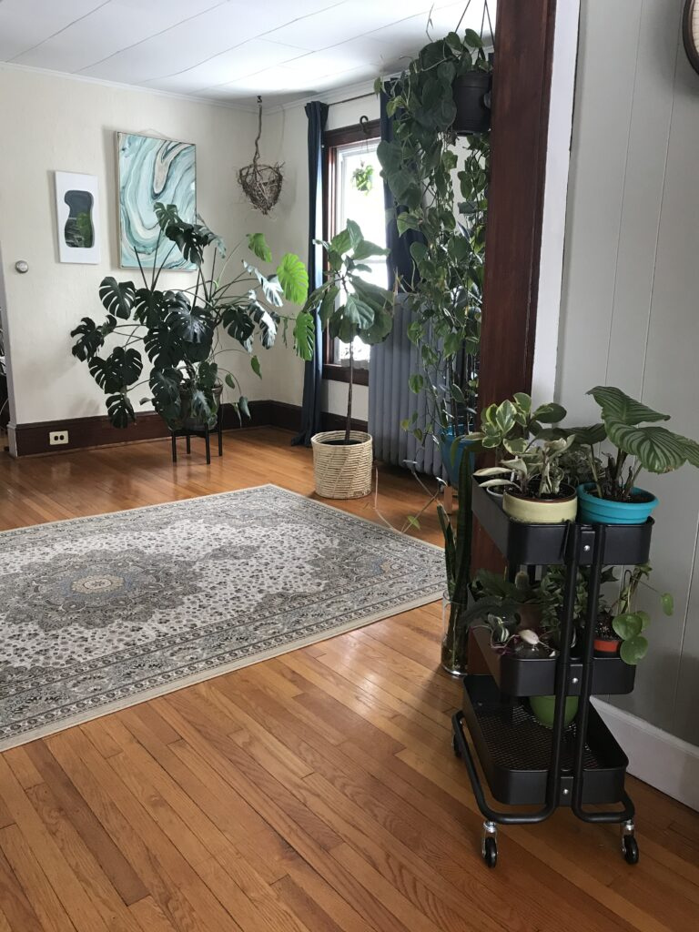 Houseplants in cart plant stand