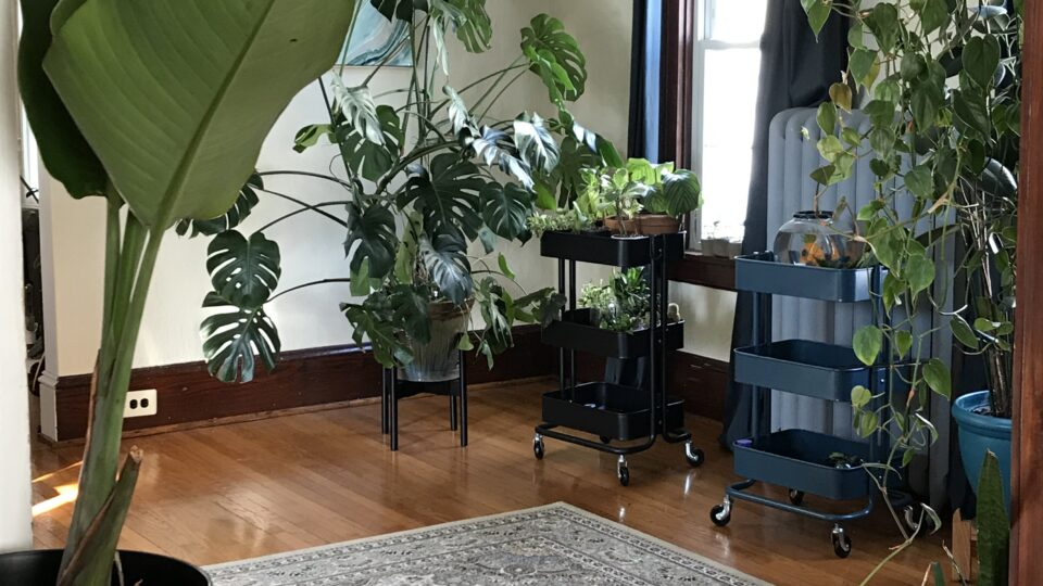 How To: Transform a Utility Cart into a Plant Stand
